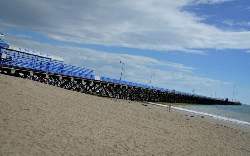, ¿Está el INCOP planeando concesionar los muelles de Golfito, Puntarenas y Quepos?